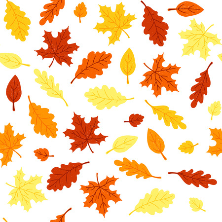 Seamless pattern with colorful autumn leaves on a white background. Vector illustration. Ilustrace