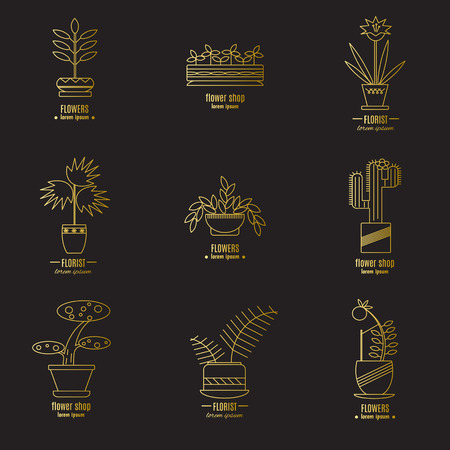 Collection of labels with house plants for your business. Golden icons on a black background, vector illustration. Vector Illustration