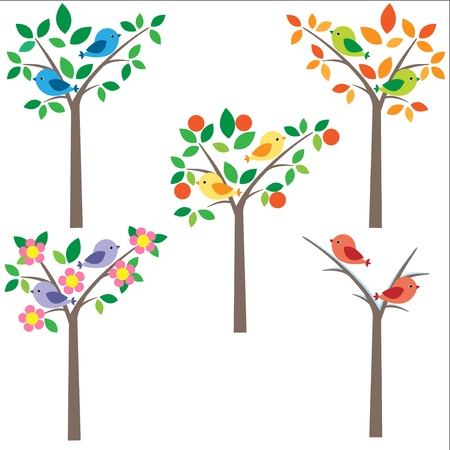 blooms: Birds sitting on tree at different seasons Illustration
