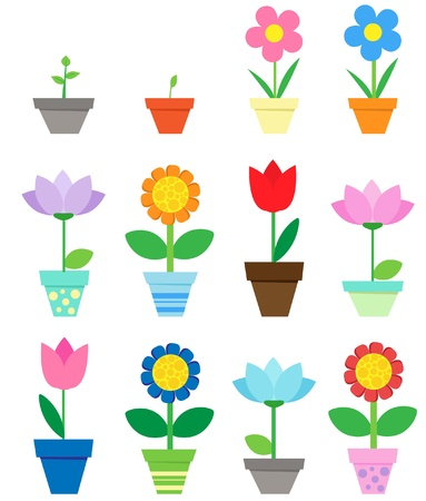 tulips isolated on white background: Flowers in pots - clip art