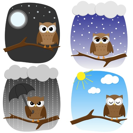 sunny cold days: Four owls on branches in different weather and in different mood