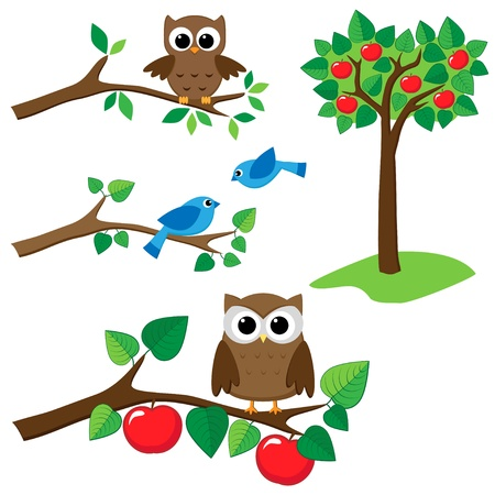 Set of summer nature elements: branches with sitting owls and birds and apple tree.