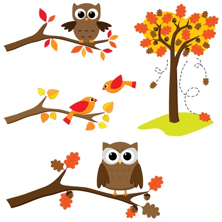 Set of autumn nature elements: branches with sitting owls and birds and . Stock Illustratie