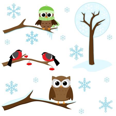 Winter set - vogels op takken, bomen en sneeuwvlokken Vector Illustratie
