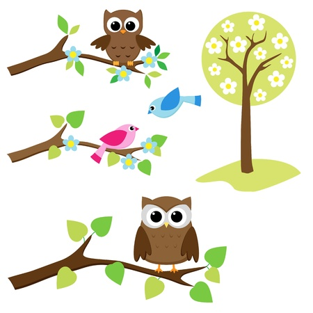 Blooming tree and branches with sitting owls and birds