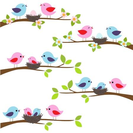arboles de caricatura: Familia de p�jaros posados ??en una rama Vectores
