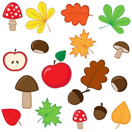 Set of autumnal nature elements Vector