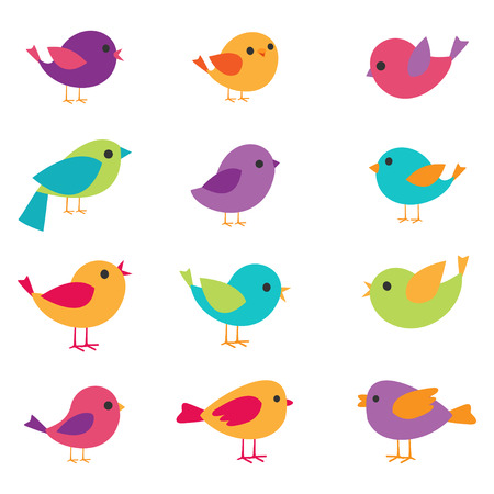 birds: Vector set of colorful and bright birds