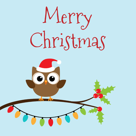 owlet: Owlet in Christmas hat on branch, Vector illustration Illustration
