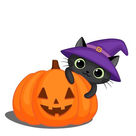 Cute black cat in a witch hat behind a Halloween pumpkin Ilustração