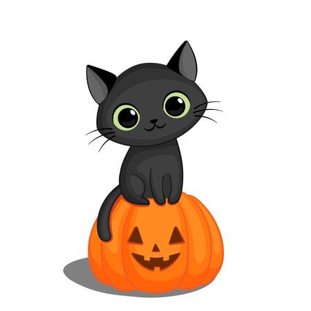 Cute black cat in sitting on a Halloween pumpkin Ilustração