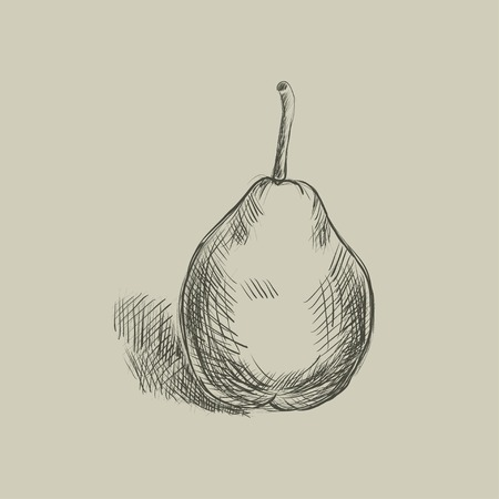 scratchboard: Sketch of a pear  Hand-drawn