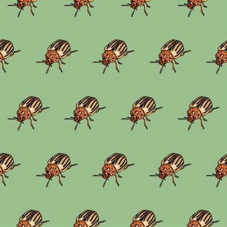 brindled: Seamless pattern with colorado beetle Illustration