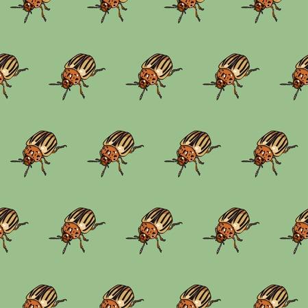 colorado: Seamless pattern with colorado beetle Illustration