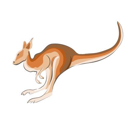 wallaby: Illustration of a kangaroo. Illustration