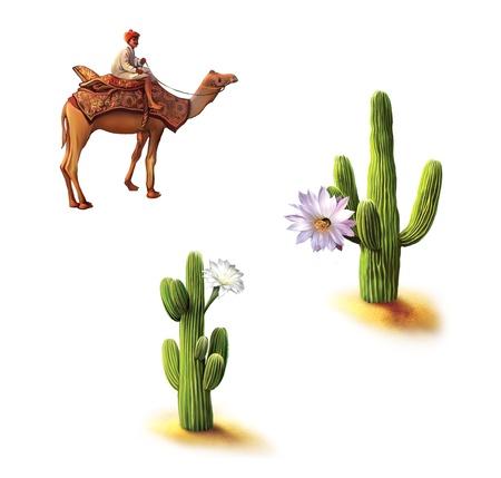 animales del desierto: Desierto, los beduinos en camello, saguaro cactus con flores, cactus Opuntia, hábitat natural Foto de archivo