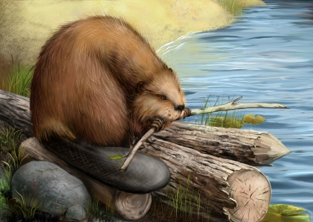 animal den: Illustration of beaver sitting on a log