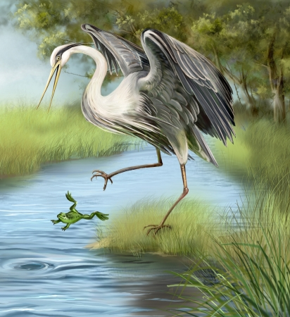 Illustration, crane hunting a frog in the water