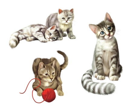 Playing cats  Kitten with ball  Two cute Small gray tabby Kittens, Isolated Illustration on white background