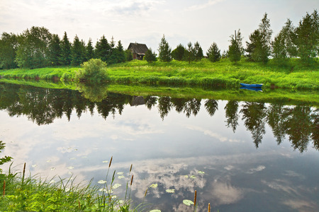 riverside trees: View on river with trees and bush on riverside reflecting in calm water. Karelia, Russia.