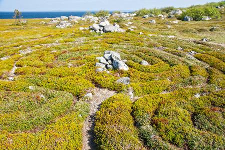 Stone labyrinth of Bolshoi Zayatsky Island, Russia 免版税图像