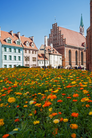 old buildings: Floral lawn in Old town Riga, Latvia
