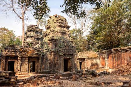 Ruins of ancient 12th-century Khmer temple Ta Prohm in Angkor, Cambodia Фото со стока