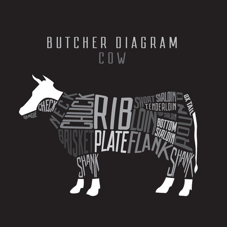 Cow butcher diagram. Cut of beef set. Typographic vintage illustration