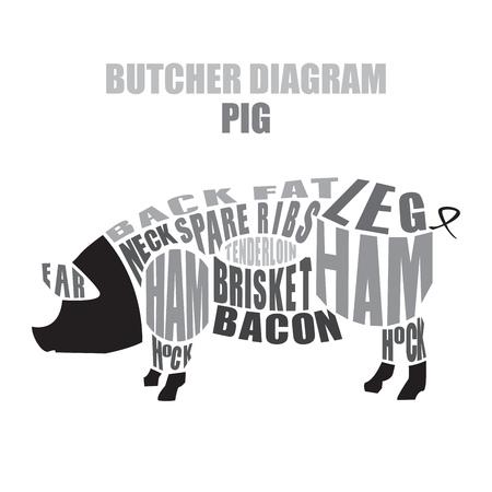 돼지 고기의 정육점도. 돼지 벡터 일러스트 레이 션의 인하