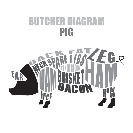 Butcher diagram of pork. Cuts of pig vector illustration