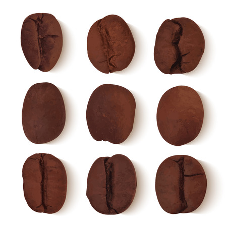 cappucino: Set of nine realistic brown coffee beans with transparent shadows on white background vector illustration