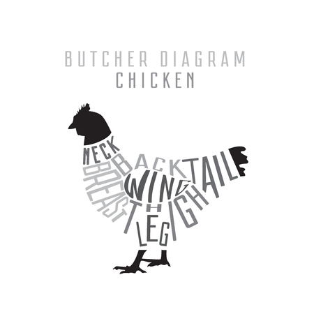 Chicken butcher diagram. Cut of chicken set. Typographic vintage