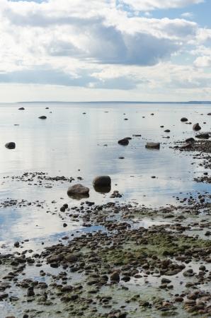 ebb: odpÅ'yw morskiego pionowych Zdjęcie Seryjne