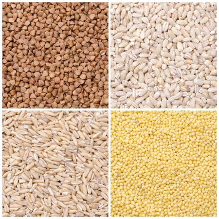 collage of different kinds of groats  buckwheat, barley, oats, millet  closeup Foto de archivo