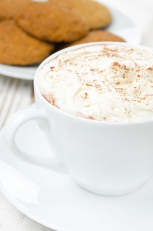 cocoa with cinnamon and whipped cream, oatmeal cookies in the background, close-up photo
