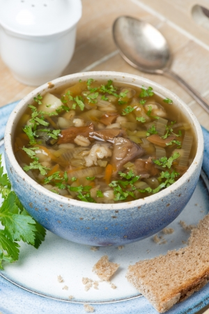 bowl of mushroom soup with pearl barley on a tray, close-up, horizontal photo
