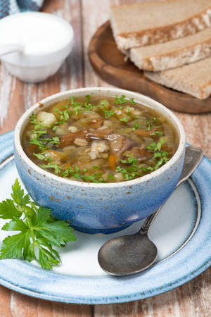 bowl of mushroom soup with pearl barley, vertical photo