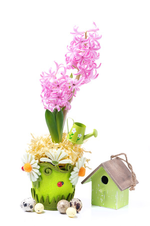 Easter composition with pink hyacinth, birdhouse and eggs, isolated on white photo