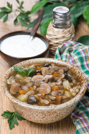 mushroom soup with pearl barley in a bowl photo