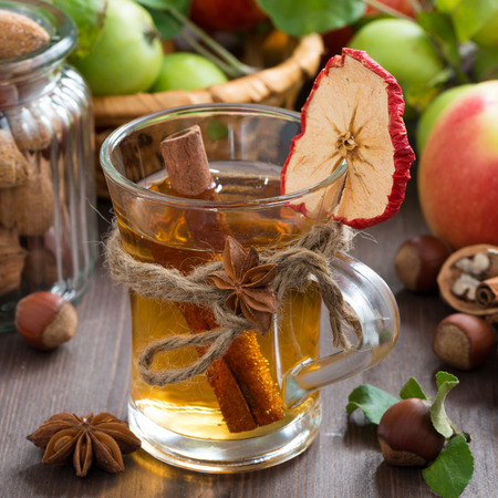 stick of cinnamon: spiced apple cider in glass, close-up