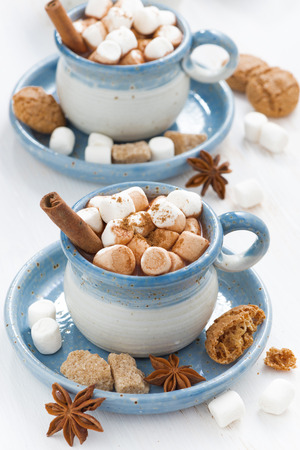 two cups of cocoa with marshmallows and cinnamon on white wooden table photo