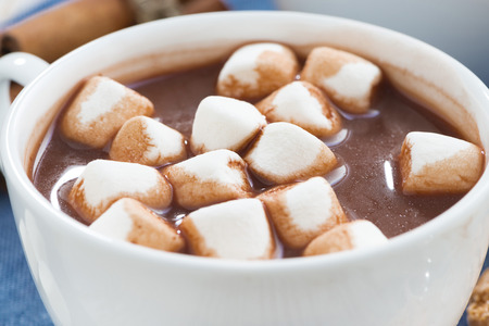 hot cocoa: cup of cocoa with marshmallows, close-up, horizontal Stock Photo