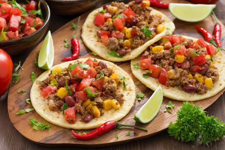 spicy food: Mexican cuisine - tortillas with chili con carne and tomato salsa, horizontal Stock Photo