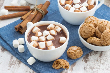 winter celebration: cup of cocoa with marshmallows and almond cookies, top view Stock Photo