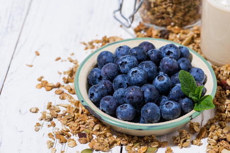 Fresh juicy blueberries and homemade granola