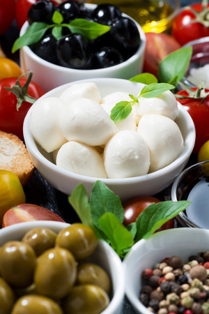 Mozzarella, fresh ingredients for the salad and bread, closeup
