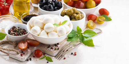 Ingredients for salad with mozzarella on white background, horizontal