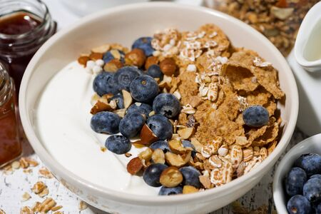 Bowl of healthy wholegrain flakes, natural yogurt and fresh blueberries for breakfast, closeup top view