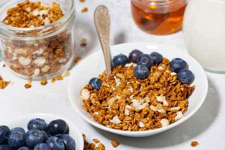 homemade coconut granola with blueberries and yogurt, closeup top view Standard-Bild