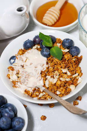 homemade coconut granola with blueberries and yogurt, vertical